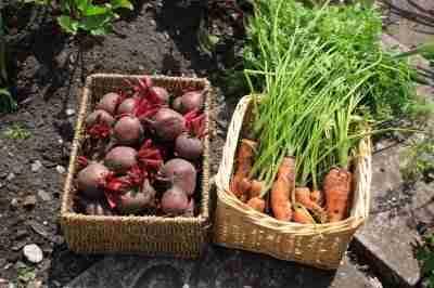 Great Video on Choosing Organics