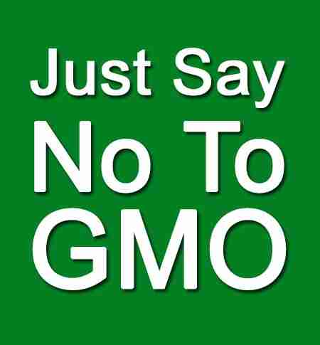 http://MarnieClark.com/we-must-avoid-genetically-modified-organisms-gmos