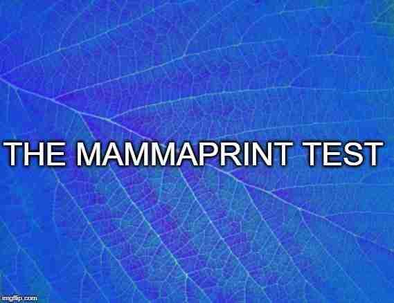 The MammaPrint® Test, a Tumor Profiler
