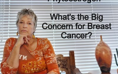 Phytoestrogen – What's the Big Concern For Breast Cancer?